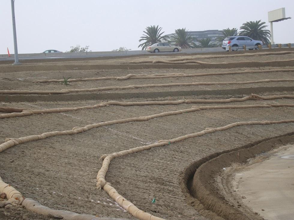 Biodegradable Straw Wattles Eco Friendly Weed Free Fiber