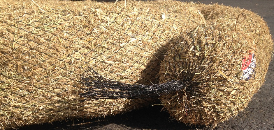 Coiled Straw Wattles From the Side